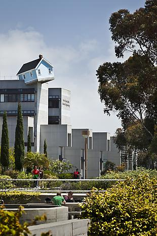 Suh_Stuart_Collection_UCSD_2012_Inst_11_hr1