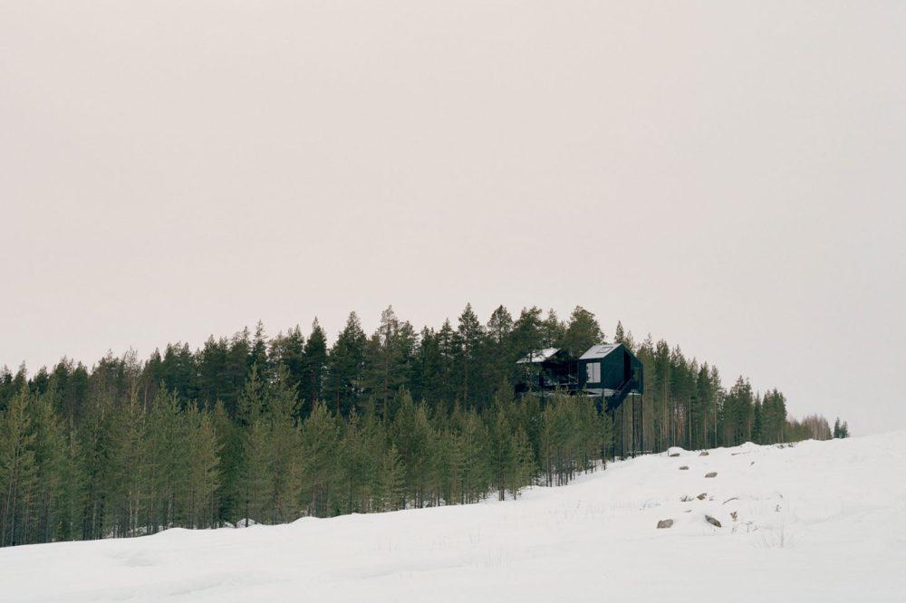 blog treehotel